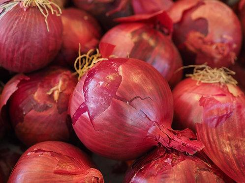 oignon rouge (le kg)