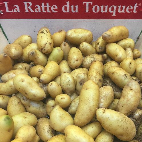 pomme de terre ratte du Touquet (le kg)