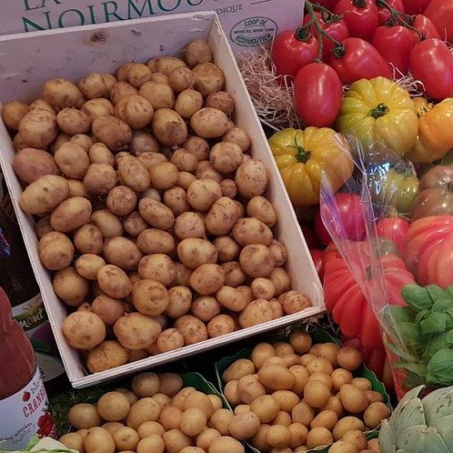 pomme de terre Noirmoutiers (les 500g)