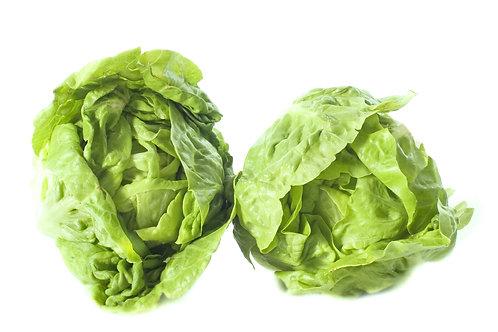 salade sucrine (le sachet de 6)