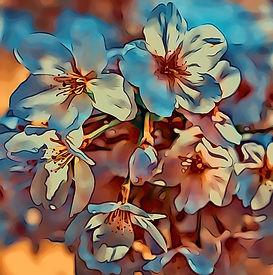 blossom style.JPG