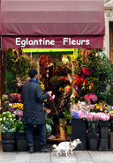 Fleuriste in the Marais