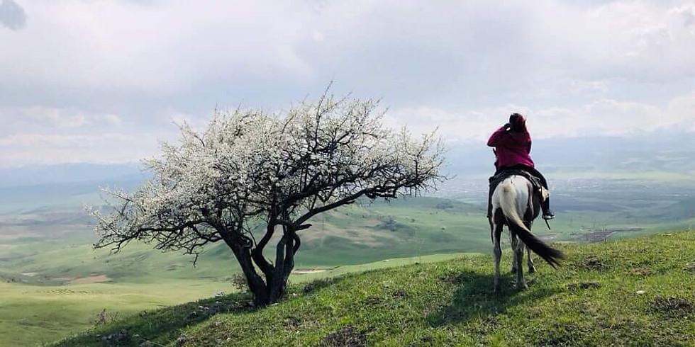 Карачаево-Черкесия: конная орнитологическая экспедиция