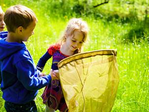 Экскурсии по насекомым для самых маленьких!