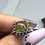 Thumbnail: Sterling silver Ammolite ring size 8.5