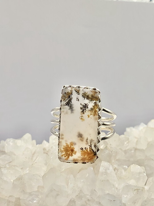 Natural Robinson Ranch Plume Agate Ring size 8