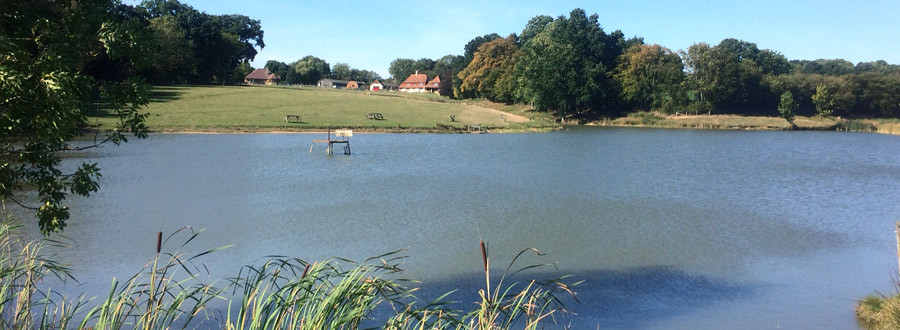 Tenterden Trout Waters - Lake View
