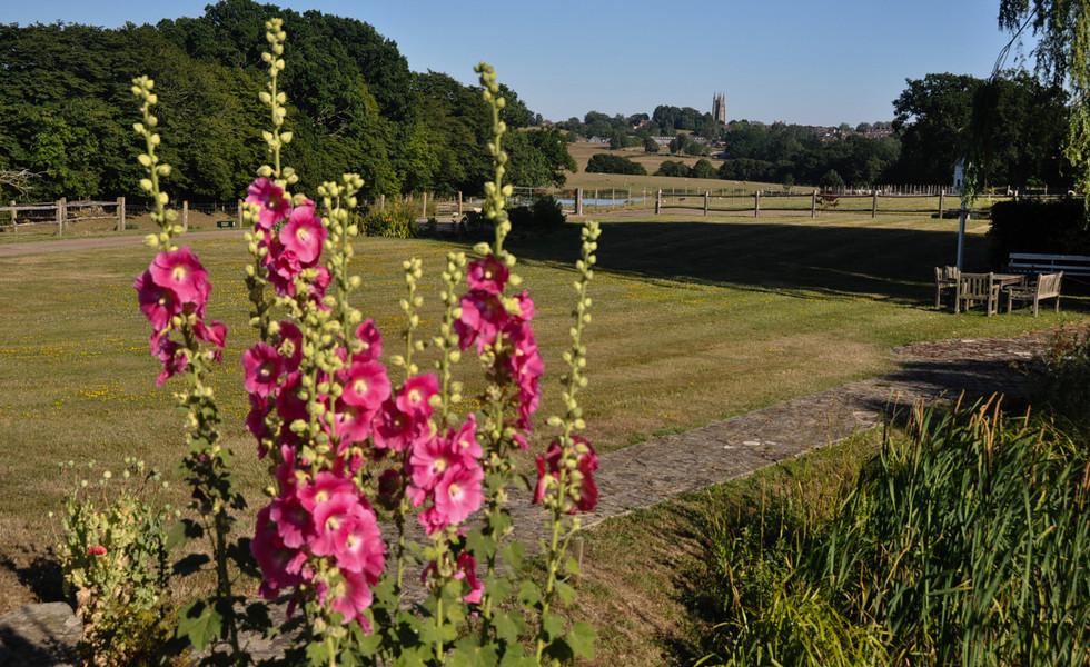 Shepherds Hut Exterior Views