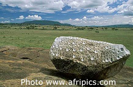 Tanzania_rock gong_gallery.jpg