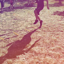 Dryland Training