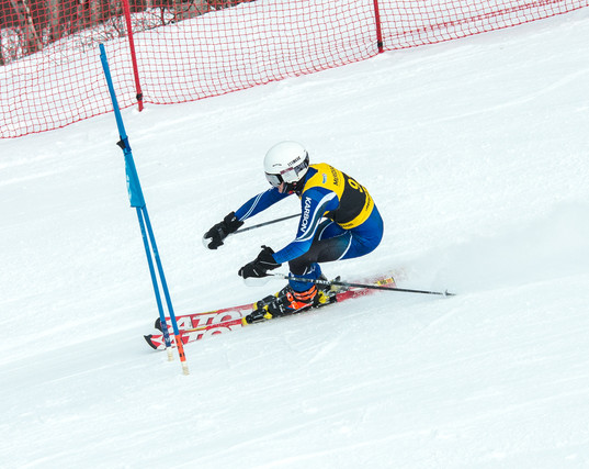 Slalom Run