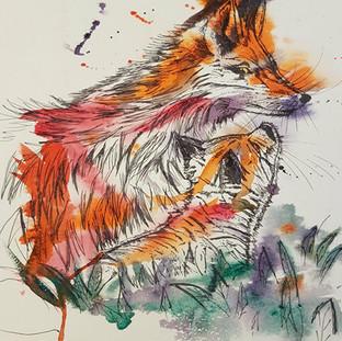 Fox & Son