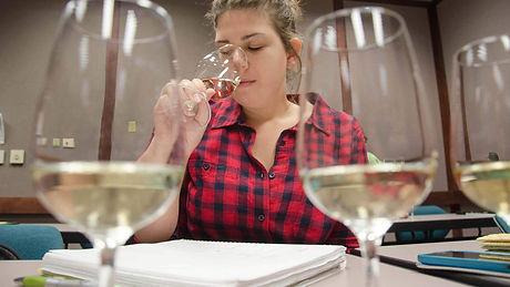 Wine+ViticultureAssociateBanner2048X1152