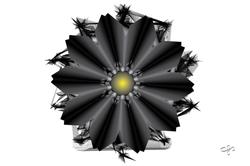 Design #4 Fb-02