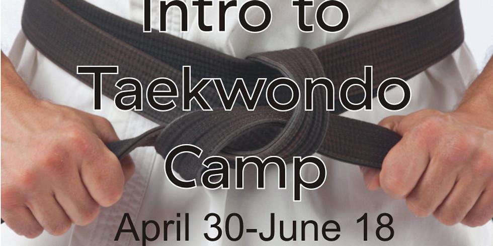 Intro to Taekwondo Camp  May 21-July 23, 2021