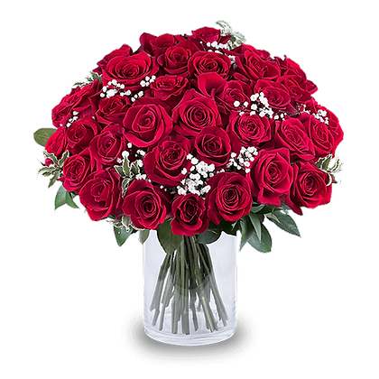 35 Red Roses