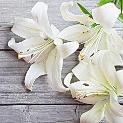 sympathy-flowers2.jpg