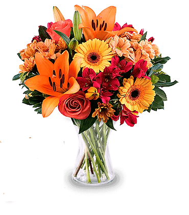 Magic florist choise