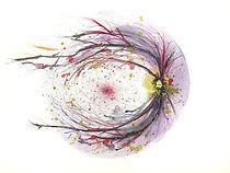 custom watercolor contemporary art fundus retina blood vessels eye