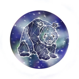 Starry Night - Cuddly Panda