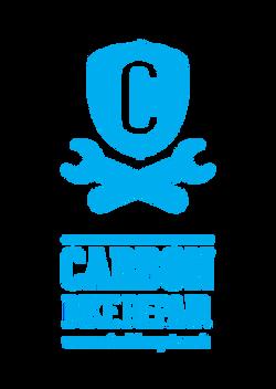 Carbon Bike Repair