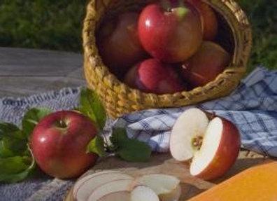 Apple, Snowsweet