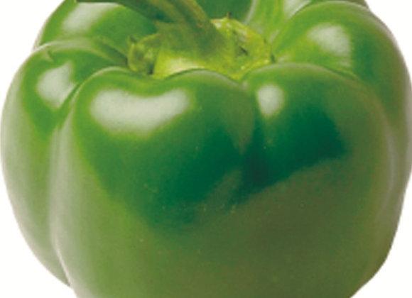 Pepper, California Wonder (Heirloom)