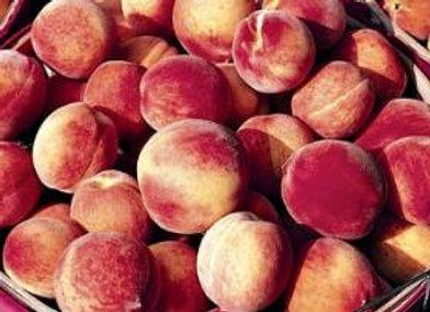 Peach Contender