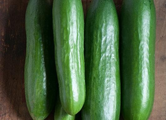 Cucumber, Diva