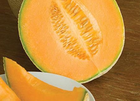 Crenshaw Melon, Hale's Best