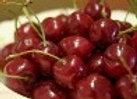 Cherry, Montmorency