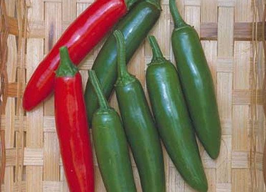 Pepper, Serrano Del Sol (Hot)