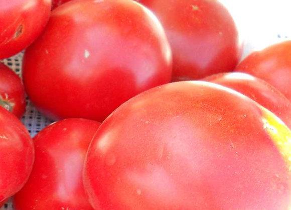 Tomato, Husky Red