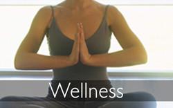 dpis banner wellness 915
