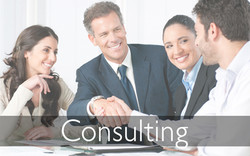 dpis banner consulting 915