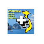 cosunam-f1.jpg