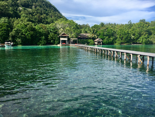 Intelligent traveler - tips for greening the big blue - Travel and Leisure Southeast Asia