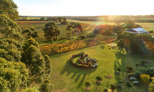 Surfing the organic wine wave in Margaret River - Travel and Leisure Southeast Asia