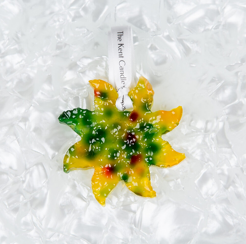 Sun Carfresh - Lime, Basil & Mandarin