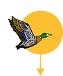 MR-Sunbird1-YEL-ARROW.png