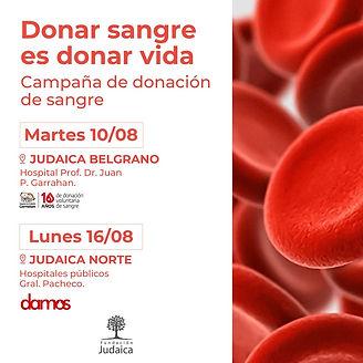 Campaña sangre.jpeg