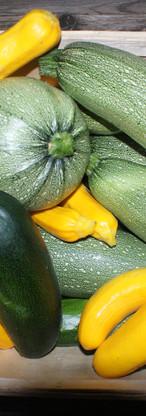 Le panaché de courgettes