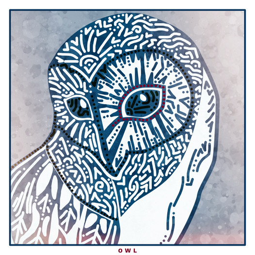 owl copy.jpg