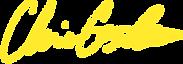 Signature_yellow.png