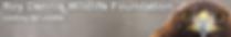 Screen Shot 2019-04-13 at 14.21.41.png