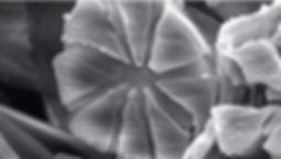 ファイバー-2.jpg