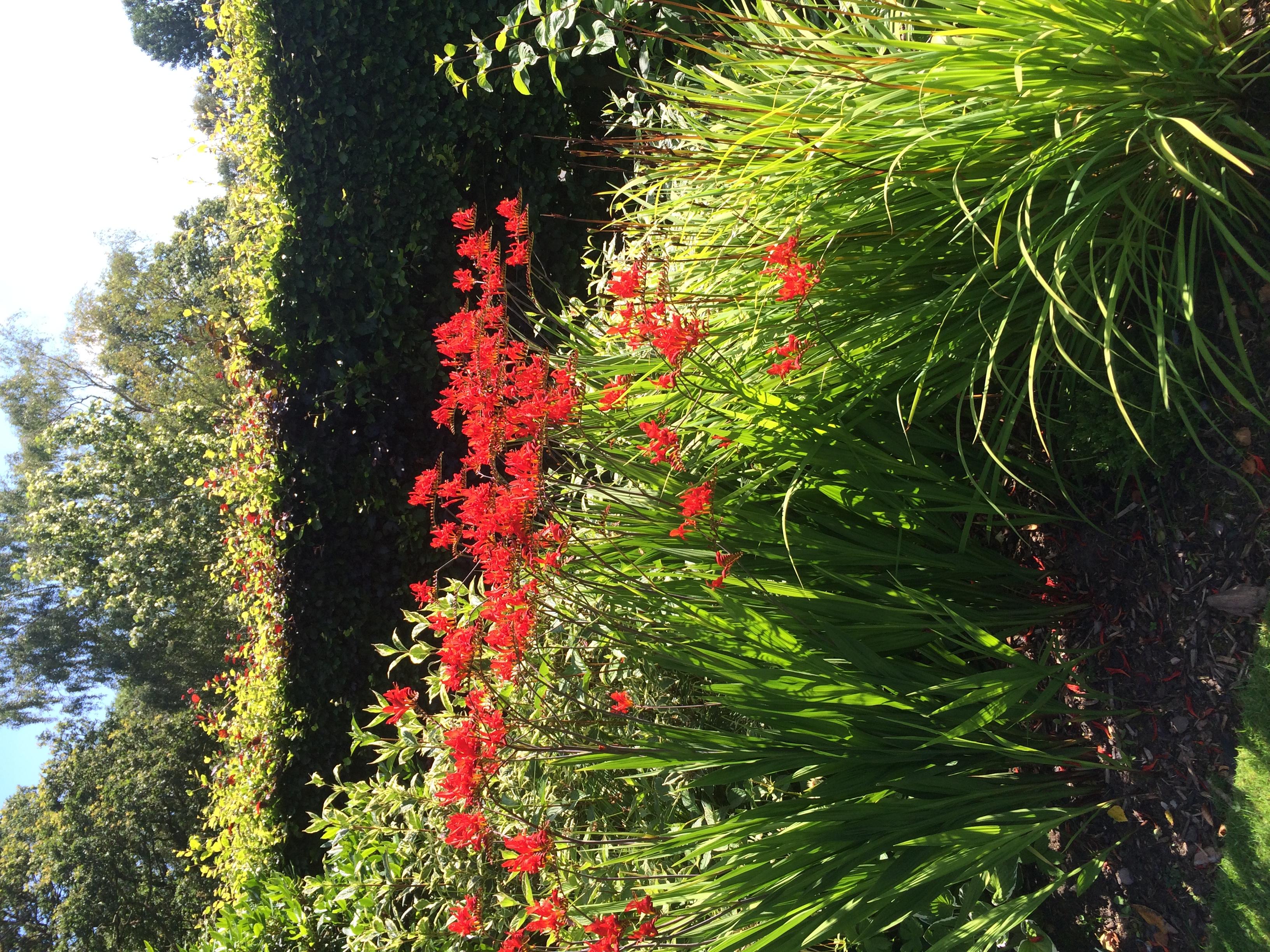 Private Garden, Carlisle.