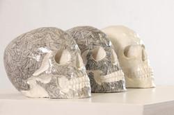 Skulls Always Look Happy