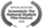 officialselection-screentestthenationals