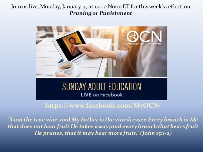 Live Adult Religious Education - Monday, January 11, 12 noon ET - Pruning or Punishment